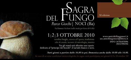 Sagra_Fungo_2010_Noci