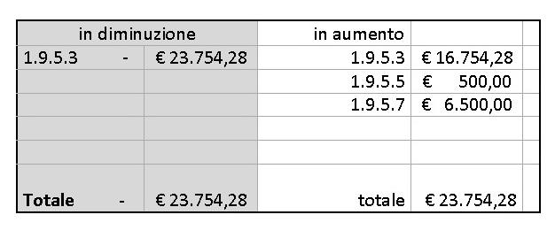 variazione_in_bilancio