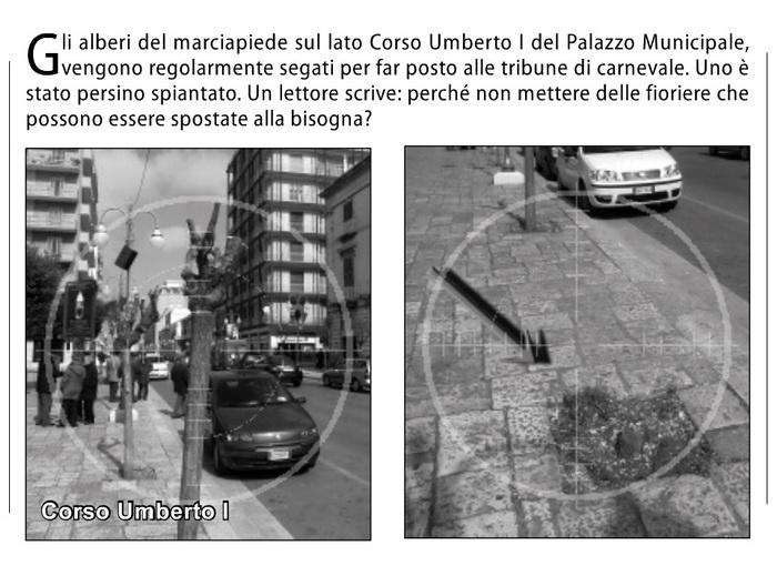 Alberi_marciapiede_C.Umberto_Putignano