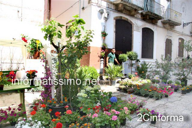 Borgo_in_fiore_2012