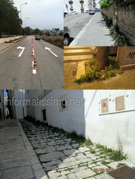 Manutenzione_strade_e_verde_pubblico