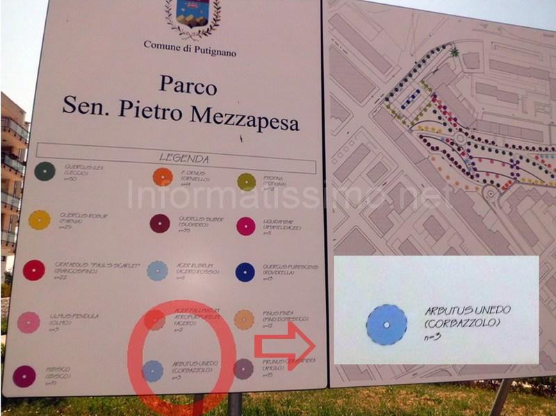 Parco_Mezzapesa_corbazzolo_2