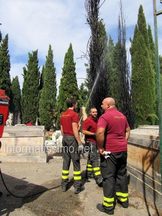 VVF_Cimitero_cipressi_in_fiamme