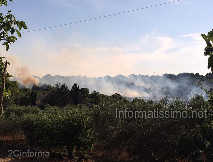 Incendio_sterpaglie_Putignano_-_Gioia_c