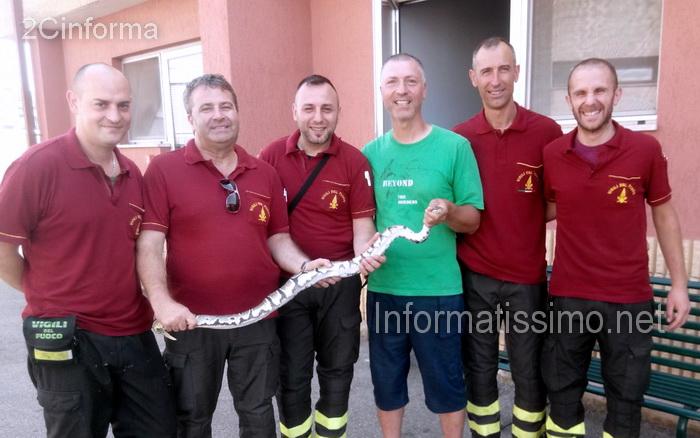 Monopoli_-_Pitone_recuperato_dai_VVF_di_Putignano_low