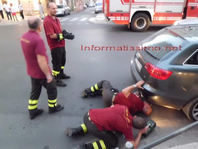 Pompieri_salvataggio_gattino4