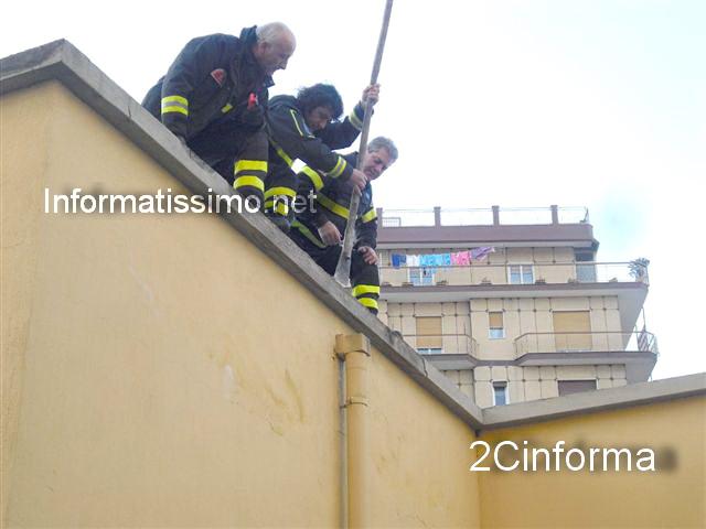 Romanelli_VVFF_calcinacci