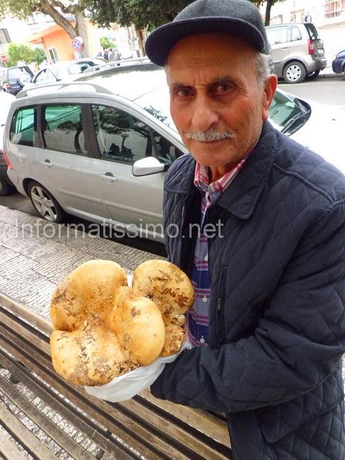 Cosimo_Patruno_fungo_di_castagna_da_15_kg_low
