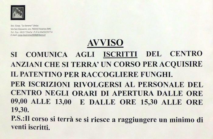Corso_funghi_per_anziani