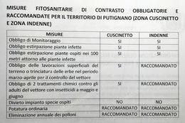 Calendario Trattamenti Olivo Puglia.Xylella Anche A Putignano Obbligo Di Prevenzione A Carico